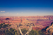 Grand Canyon Fine Art Print by Ariane Moshayedi