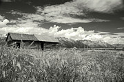 Brenda Yamen - Grand Teton Barn