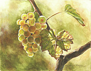 Grape Drawings Metal Prints - Grapes Metal Print by Deb Richter