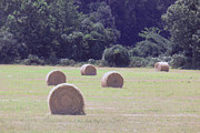 Barry Jones - Hay Bales