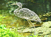 Mobile Art Sculpture Framed Prints - Heron day shot at the pond   Framed Print by Tommy  Urbans