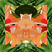 Ally Framed Prints - Hibiscus Ally Framed Print by Bell And Todd