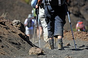45-49 Years Prints - Hickers walking on volcanic dirt in the Haleakala crater Print by Sami Sarkis