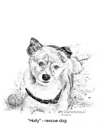 Mutt Drawings - Holly Rescue Dog by Jim Hubbard