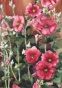 Ann Sokolovich - Hollyhocks Along The Fence