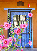 Sue Taylor - Hollyhocks