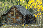 Jerry McElroy - Indian Peaks Cabin