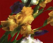 RC DeWinter - Iris in the Rough