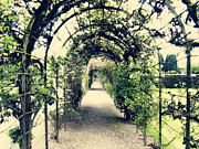 Trellis Framed Prints - Irish Archway Framed Print by Linde Townsend