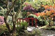 Carol Groenen - Japanese Garden Bridge with Rhododendrons