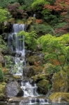 Sandra Bronstein - Japanese Garden Waterfall