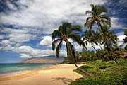 Kamaole Beach Art - Kamaole tropical landscape by Pierre Leclerc