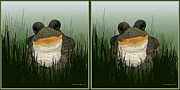 Crossview Framed Prints - King Frog - Gently cross your eyes and focus on the middle image Framed Print by Brian Wallace