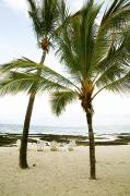 Ocean And Sand - Kohala Coast Beach by Kicka Witte - Printscapes