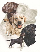 Labrador Retriever Fine Art Print by Barbara Keith