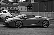 Steve Harrington - Lamborghini Gallardo bw