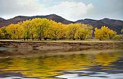Jerry McElroy - Las Animas Fall