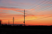 Rcnaturephotos Photos - Linemans Sunset by Rachel Cohen