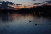 Yvonne Ayoub - Londons Hyde Park after Sundown