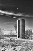 Minnesota Homestead Framed Prints - Lone Silo Framed Print by Guy Whiteley
