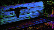 Long Horn Cow Photos - Long Horn Bench Blue by Dulce Levitz