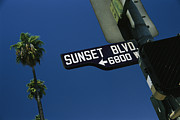Boulevard Posters - Looking Up At Sunset Boulevard Sign Poster by Todd Gipstein