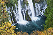 Macarthur Framed Prints - MacArthur-Burney Falls in Autumn Framed Print by Greg Nyquist