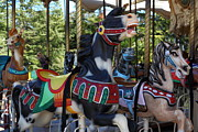 Wingsdomain Art and Photography - Merry Go Around - 5D19212