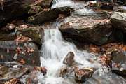 Pigeon Forge Photos - Mini Waterfall by Michael Waters