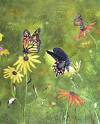 Donna Wiegand - Monarch Butterflies