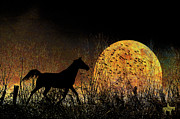 Photomanipulation Metal Prints - Moonrise Trot Metal Print by Karen Slagle