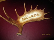 Alaska Moose Pyrography - Moose Antler Plaque by Adam Owen