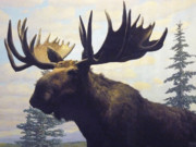 Mary Ann  Leitch - Moose Diorama