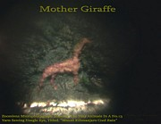 Modern Microscopic Art Reliefs - Mother Giraffe  by Phillip H George