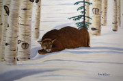 Crouched Prints - Mountain Lion Print by Brian Wallace