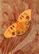 Butterfly In Motion Framed Prints - Movement Butterfly Framed Print by Charlotte Garrett