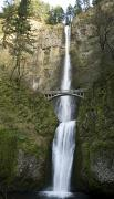 Pour Prints - Multnomah Falls Print by Peter French - Printscapes