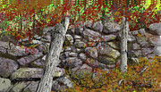 Fences Drawings Prints - N.J. Rock Fence Print by Jim Hubbard