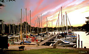 Docked Sailboats Posters - Oak Pt Harbor At Sunset Poster by Brian Wallace