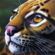 Wildlife Art Painting Originals - Ocelot 2 by Jurek Zamoyski