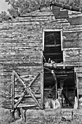 Debra and Dave Vanderlaan - Old Barn Door in Black and White