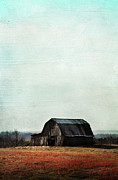 Old Barn Posters - Old Kentucky Tobacco Barn Poster by Stephanie Frey