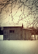 Weathered Prints - Old shed in wintertime Print by Sandra Cunningham