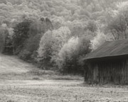 Old Tobacco Barn In Black And White Fine Art Print by Smilin Eyes Treasures