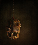 Spooky Photo Posters - Old wooden bird cage with feathers Poster by Sandra Cunningham