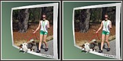 Crossview Framed Prints - On The Trail - Gently cross your eyes and focus on the middle image that appears Framed Print by Brian Wallace