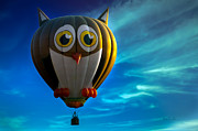 Bob Orsillo - Owl Hot Air Balloon