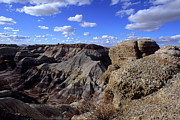 Color_image Posters - Painted Desert Blue Sky Poster by John Brink
