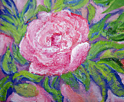 Patricia Taylor - Painted Rose