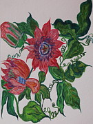 Passionflower Painting Prints - Passyflor Print by Joy Sparks